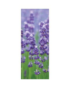 Demco® Upstart® Lavender Scratch-and-Sniff Bookmarks