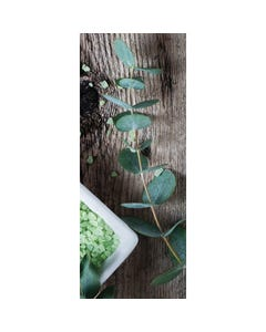 Demco® Upstart® Eucalyptus Scratch-and-Sniff Bookmarks