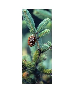 Demco® Upstart® Winter Pine Scratch-and-Sniff Bookmarks