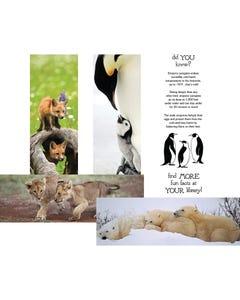 Demco® Upstart® Together Forever Animal Bookmarks - Lion, Polar Bear, Fox, Penguin