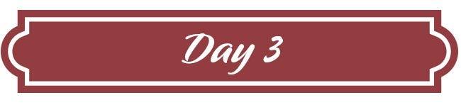Day 3 - Holiday's Celebration Basket