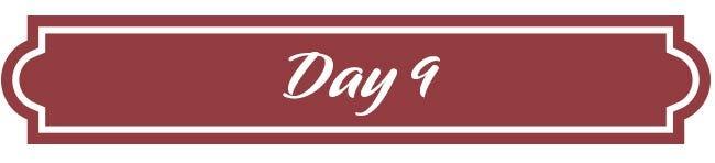 Day 9 - Godiva Holiday Gift Trunk